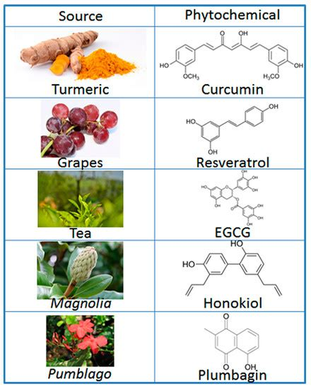 Molecules | Free Full-Text | Cancer Chemoprevention by