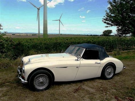 Snydeannonce | Austin Healey